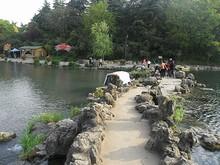 再び園内の泉