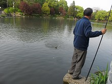 釣りをしている人が何人かいる