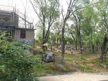 バーベキュー村