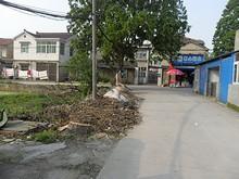 中州の北にある江心スーパー