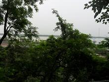 長江が良く見える