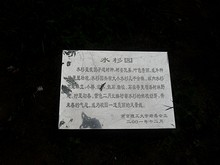 水杉園の碑