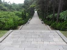 鄭和墓への道