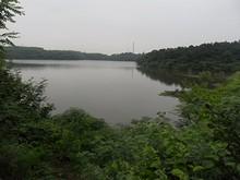 鄭和墓裏の池