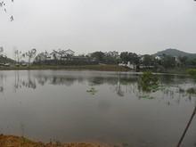 鄭和墓近くの池