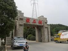 鎖石村の門と送電線