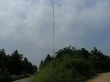 分岐から見たタワー