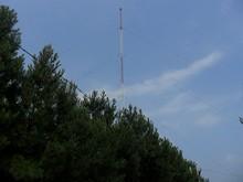 西から見たタワー