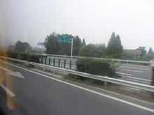 G42高速 294番 G36とG42の分岐 馬群JCT