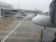 春秋航空A320型機の機首