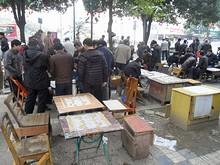 公園の一角で中国将棋をする人たち