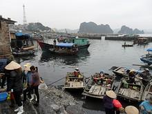 海鮮市場のそばの漁港