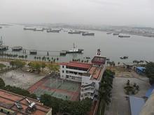 橋から見た港内