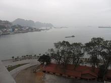 橋から見た湾