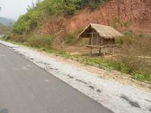 道路沿いの小屋