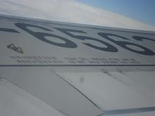 翼に書いてある文字