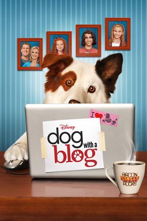 ブログ犬 スタン
