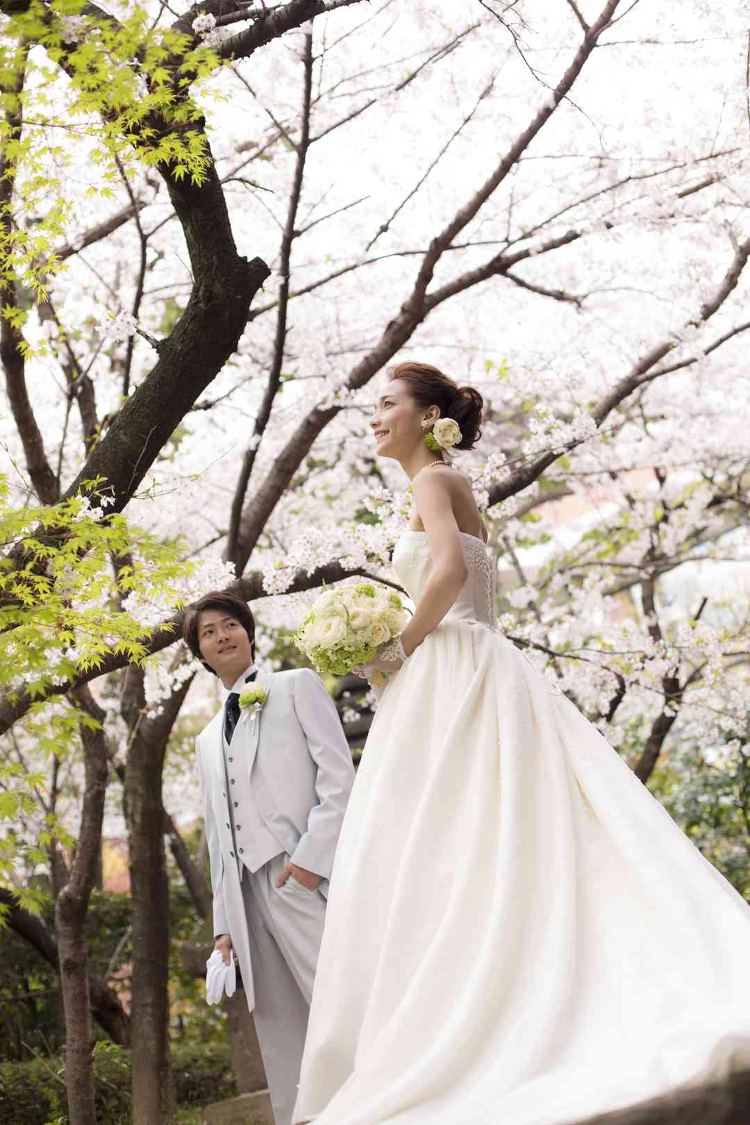 桜のシーズンも人気